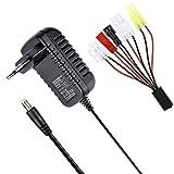 HOBBYMATE Chargeur de Batterie 4.8v, 7.2v, 9.6v NiMH / NiCd pour Batterie de Voiture Rc, Chargeur de Batterie Airsoft, Chargeur de Batterie AC / DC avec 5 Prises convertisseur