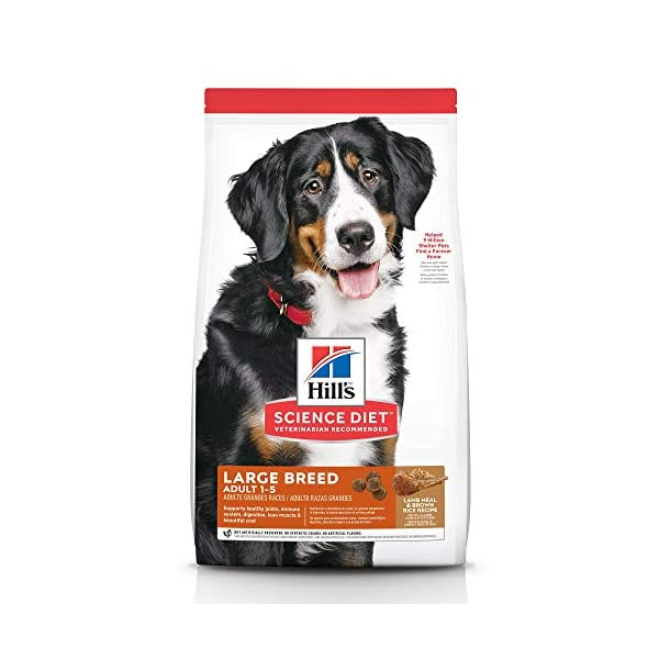 Hill's Science Diet Adult Large Breed Lamb Meal & Brown Rice Recipe Dry...