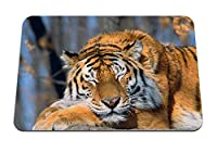 26cmx21cm マウスパッド (タイガーフェイスプレデタービッグキャット) パターンカスタムの マウスパッド