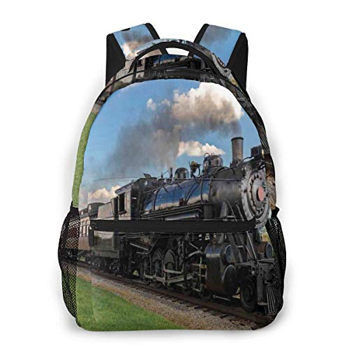 Lawenp School Backpacks Vintage Locomotive in Countryside Scenery Green Grass Puff Train Picture for Teen Girls&Boys 16 Inch Student Bookbags Laptop Casual Rucksack