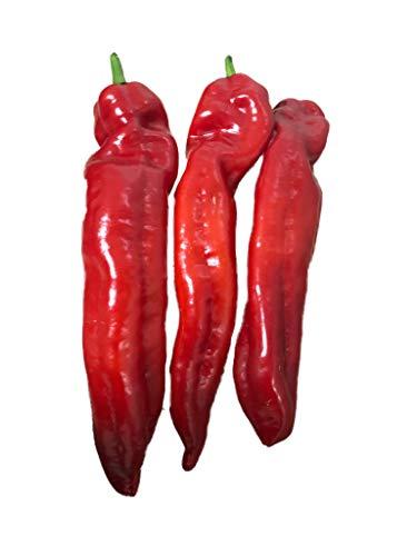"""Spitzpaprika (Ungarischer Rießen-Spitzpaprika) 10 Samen >>>""""GIGANTISCH-GROßE-FRÜCHTE""""<<<"""