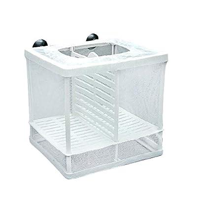 Coddington Isolation Gitterbox Saugnapf Design Fisch-Zucht Incubator Net Aquarium Hanging Hatchery Box