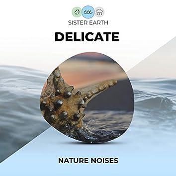 Delicate Nature Noises