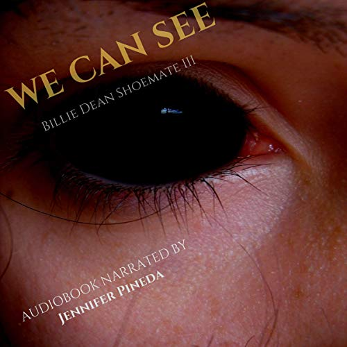 We Can See audiobook cover art