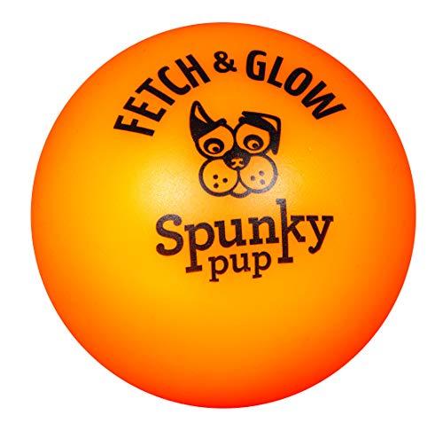American Dog Toys Fetch & Glow Jr. Ball, Medium