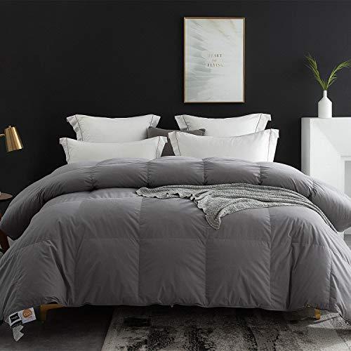 Globon Goose Down Comforter King Size All Season Duvet Insert...