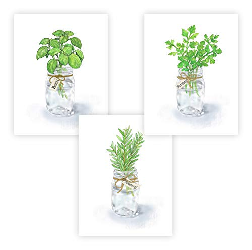 FannyD Kitchen Herbs UNFRAMED Watercolor Art 3 Print Set 8.5' x 11' Perfect for Bedroom, Bathroom, Kitchen, Nursery etc. Can Be Framed 8' x 10' or Larger with mat. Unique Wall Decor!! (Herbs 1 Green)