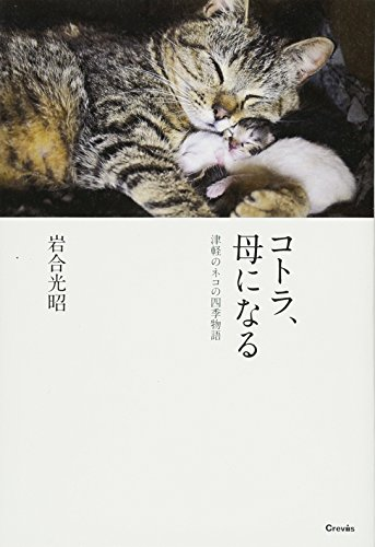 コトラ、母になる: 津軽のネコの四季物語の詳細を見る