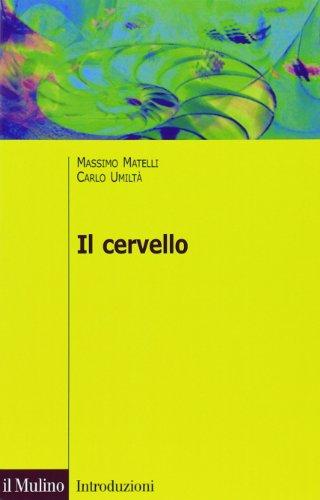 Il cervello. Anatomia e funzione del Sistema nervoso centrale. Ediz. illustrata by Massimo Matelli