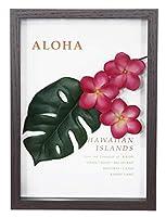 ハワイアン 雑貨/インテリア/ハワイ 雑貨 ALOHA アロハ プルメリアフレーム(ピンク) ZAH-51698