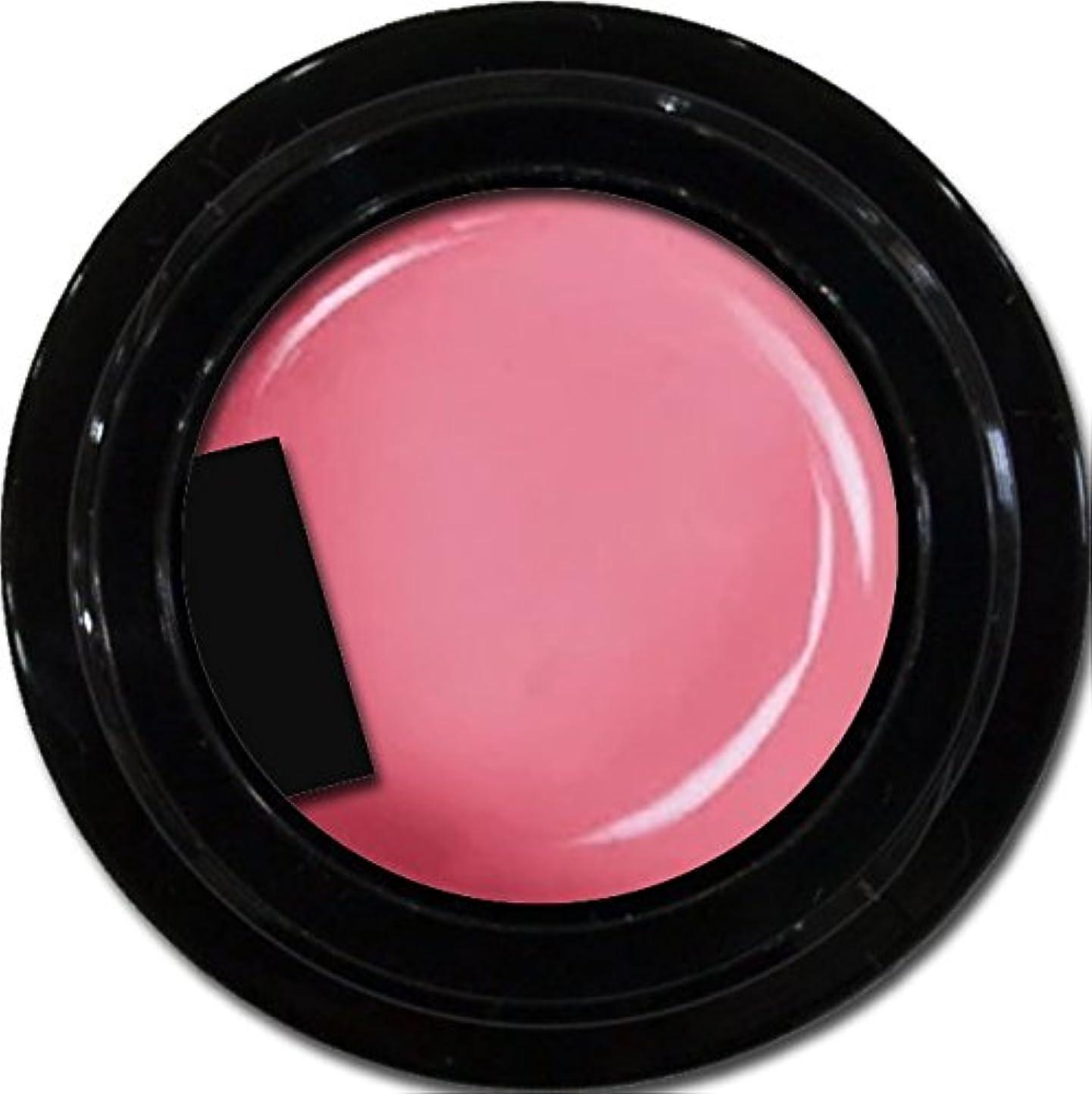 粘性のおもしろいサイバースペースカラージェル enchant color gel M212 CoralPink 3g/ マットカラージェル M212コーラルピンク 3グラム