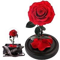 Dovete fare un regalo speciale?Fatelo con un stabilized rose!Le rose sono le regine indiscusse dei fiori e sono anche tra i regali più graditi per noi donne, sono fiori senza tempo, dai colori e tonalità infinite. La vita delle rose recise è abbastan...