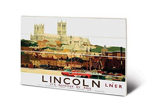 National Railway Museum SW12544P Impression sur Bois 59 x 40 cm Lincoln (Cathedral & Boats by Fred Taylor), Multicolor, 59 x 40 x 1,2 cm