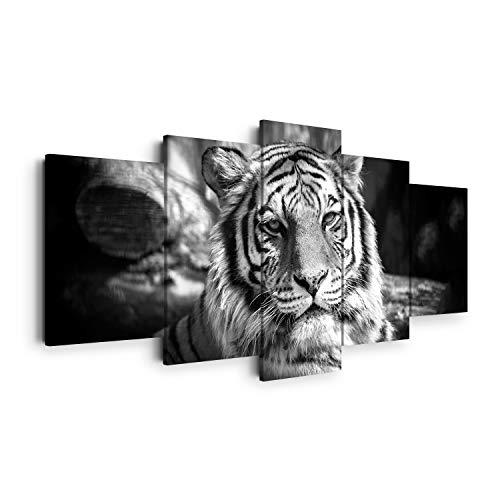 DON LETRA Cuadros Animal Tigre en Lienzo para Decoración de Salón y Dormitorio, 100 x 50 cm (5 Piezas), Lienzo 100% Poliéster con Bastidor de Madera, Blanco y Negro, Tamaño XXL, LEN-139