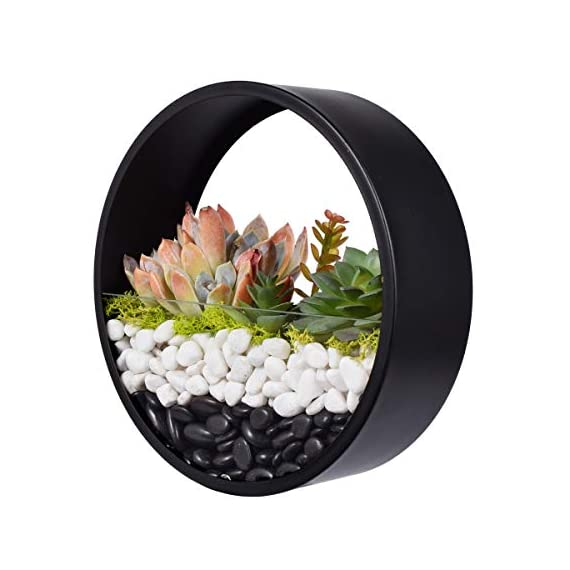 Ecosides Wall Mounted Planter Wall Hanging Planters Metal Plant Terrarium for Indoor Planter, Round Terrarium for Faux Flower Air Plant Holders Decorative Morden Circle Iron Vase for Succulent 1 Geometric metal wall planter is perfect for hanging succulents or office organization. Durably-constructed of metal in a classic and styled look. Perfect accent for any home or patio. Durably-constructed of metal in a classic and styled look. Perfect accent for any home or patio. Not only wall plaques or contemporary lighting can give a stunning look to your walls, hanging planters like this can also change your walls into something extraordinary. Plant some aromatic plants in this planter also bring some greenery effect to your space. Functional and chic it is perfect for expressing your style at home.