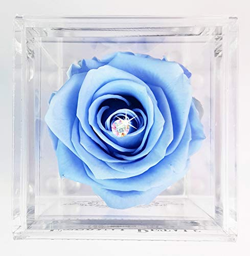 Eternal Petals Rose That Lasts A Year - The Unique Gift for Women and Men, an, Birthday Gift - White Gold Solo with Multicolour Swarovski Crystal (Light Blue)