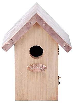 Esschert Design NK06 20 x 14 x 11cm Wood Wren Nest Box Copper Roof - Brown from Esschert