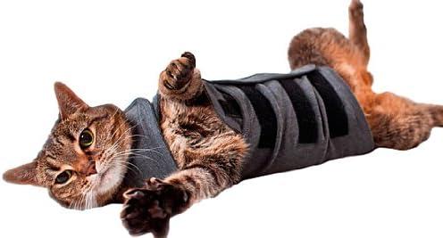 Thundershirt - Chaleco tranquilizante para Gatos, Color Gris: Amazon.es: Productos para mascotas