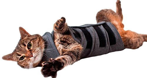 Thundershirt Beruhigungsweste – Katzenmantel, Größe L, grau