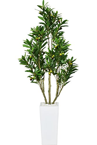 DORIS 人工観葉植物 光触媒 簡単世話いらず フェイクグリーン インテリア 水やり不要 果実付 オリーブフルーツ