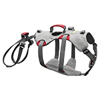 Strong and secure climbing harness for dogs, For safely lifting and lowering dogs on cliff faces and in exposed areas, Full range of motion for climbing and hiking, Perfect for Labrador retrievers, Rottweilers and similar sized breeds Size Large/X-La...