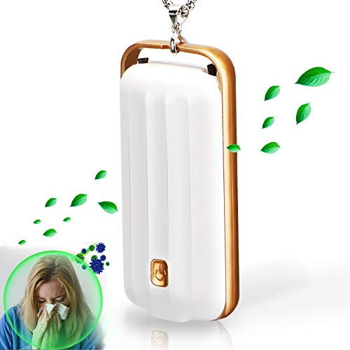 Wearable Air Purifier,Personal Air Purifier Necklace Around The Neck,Travel Size Negative Ion Generator,Remove Smoke Smell,Protable Smoke Purifier for Car Pet Smell Out Door by H TING