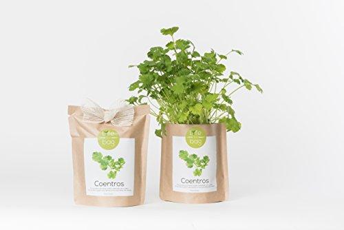 Kit Bio Légumes, aromates, fleurs comestible par Life in a Bag - A cultiver soi-même - Idée cadeau (Coriandre)