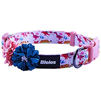 BLEIES Cute Puppy Dinosaur Dog Collar with Removable Decoration Flower