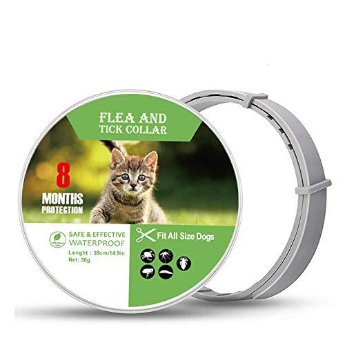 Collar Antipulgas y Garrapatas para Perros y Gatos, Collar Antiparasitos Tamaño Ajustable, Tratamiento de Pulgas a Prueba de Agua Natural y Seguro,Impermeable,Protección de 8 Meses,1 Paquete(Pequeño)