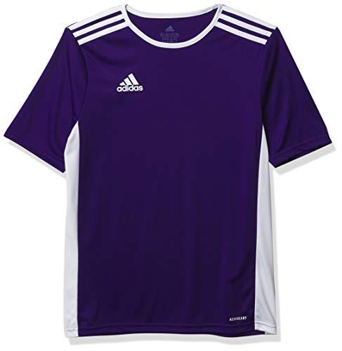 adidas Men's Entrada 18 AEROREADY Primegreen Regular Fit Soccer Short Sleeve Jersey, Collegiate Purple/White, Medium