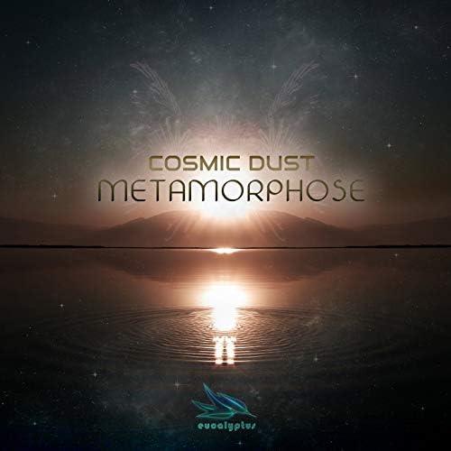 Cosmic Dust