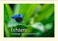 Echsen - Schuppige Ueberlebenskuenstler (Wandkalender 2022 DIN A2 quer): Echsen aus aller Welt (Monatskalender, 14 Seiten )