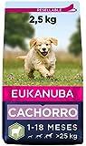 Eukanuba Alimento seco para cachorros en crecimiento de razas grandes, rico...