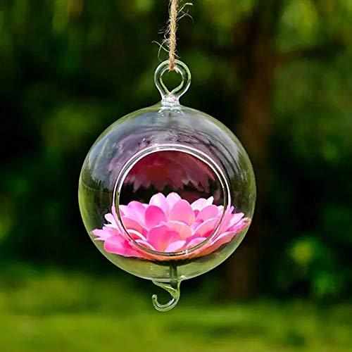 HO-TBO plant terrarium, bolvormige hangende glazen vaas met haak bloempot tuindecoratie helder kassen tuinwerk