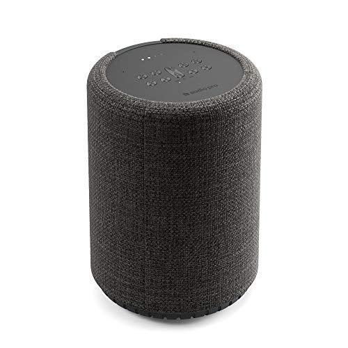 Altavoz Bluetooth Inalámbrico Multiroom Portátil con Control por Voz - Speaker Potente Compatible con AirPlay 2, Google Assistant y Cast, Spotify Connect - Audio Pro G10 - Gris Claro