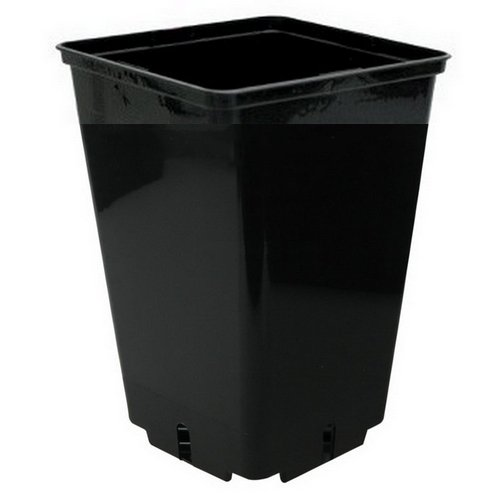 Maceta cuadrada negra de cultivo CEP2-16x16x23,5cm (4L)