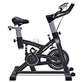 IDEER LIFE Indoor Cycling Bike Stationary Exercise Bike for ...