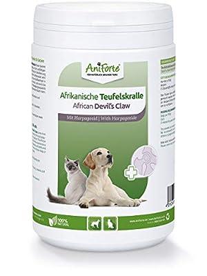 AniForte Afrikanische Teufelskralle für Hunde & Katzen 500g - Teufelskrallen Pulver für Sehnen & Bänder, Gelenkpulver zur Unterstützung der Beweglichkeit & Gelenkfunktion, ehemals Gelenk Aktiv (500 g)