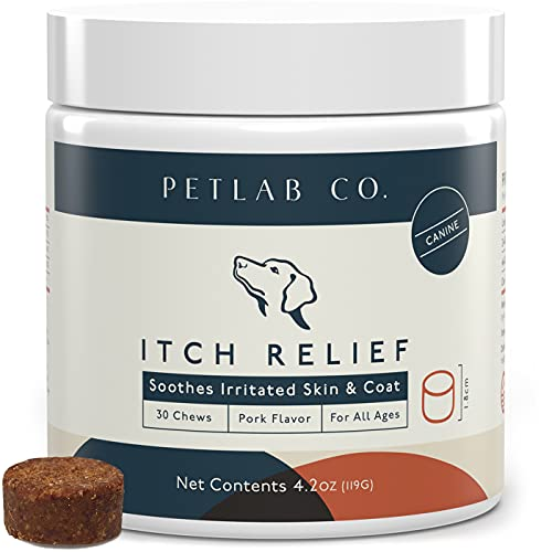 Petlab Co. Itch Chews for Dogs | Treats Designed for Itchy Dogs | May Help with Uncomfortable Skin Conditions | Turmeric Curcumin, Omega 3 & 6, Honey