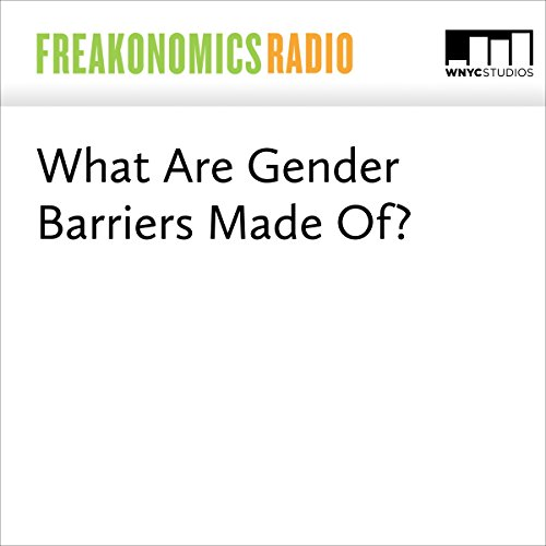 What Are Gender Barriers Made Of? audiobook cover art