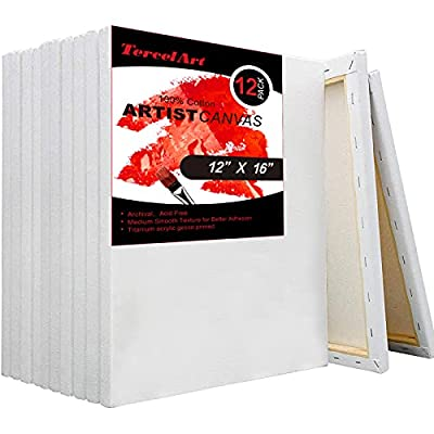 TercelArt Stretched Canvas, Pack of 12, 12x16 I...
