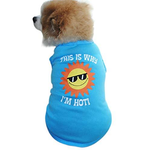 Bluelucon zacht puppy T-shirt huisdier mantel pullover kostuum lente en zomer ademende T-shirts hondenshirt shirt tops hondenshirt