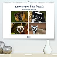 Lemuren Portraits (Premium, hochwertiger DIN A2 Wandkalender 2022, Kunstdruck in Hochglanz): Portraits der Lemuren Madagaskars (Monatskalender, 14 Seiten )