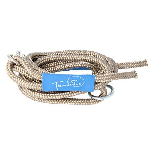Taumur Hveitiborg - leichte City Hundeleine - Goldbraun - Leine für kleine Hunde aus robustem PPM