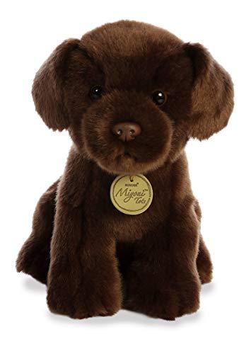 Aurora - Miyoni - 11' Chocolate Lab Pup, Brown