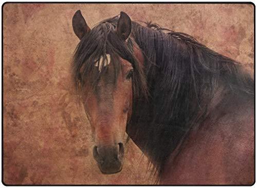 Voetmat voor woonkamer, slaapkamer, huis, keuken, voetmat voor kantoor, personaliseerbaar, 63 x 48 inch, zacht, Grunge Paard, Spaans paard 80 x 58 inches Image 1336