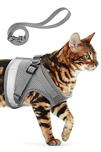 AEITPET Katzengeschirr katzenleine Geschirr für Katzen Ausbruchsicher Welpengeschirr Weich Kaninchengarnitur Katzen Air Mesh Verstellbar Hundeweste Harness (L, grau)