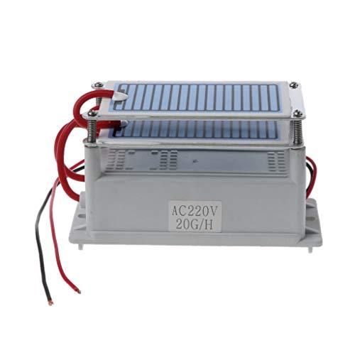 Gjyia Generador de ozono 20g / H Placa de cerámica integrada AC 220V Ozonizador para secador