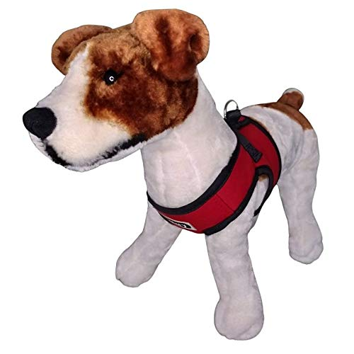 Arnés con Abrigo Chaleco para Perros Pequeños, Cachorros o