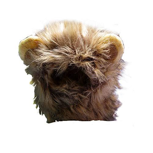 Costume de lion Pride Kings Avec crini/ère et oreilles Id/éal pour des photos exceptionnelles avec votre ami /à quatre pattes Taille S // M Pour petit chien/et chat